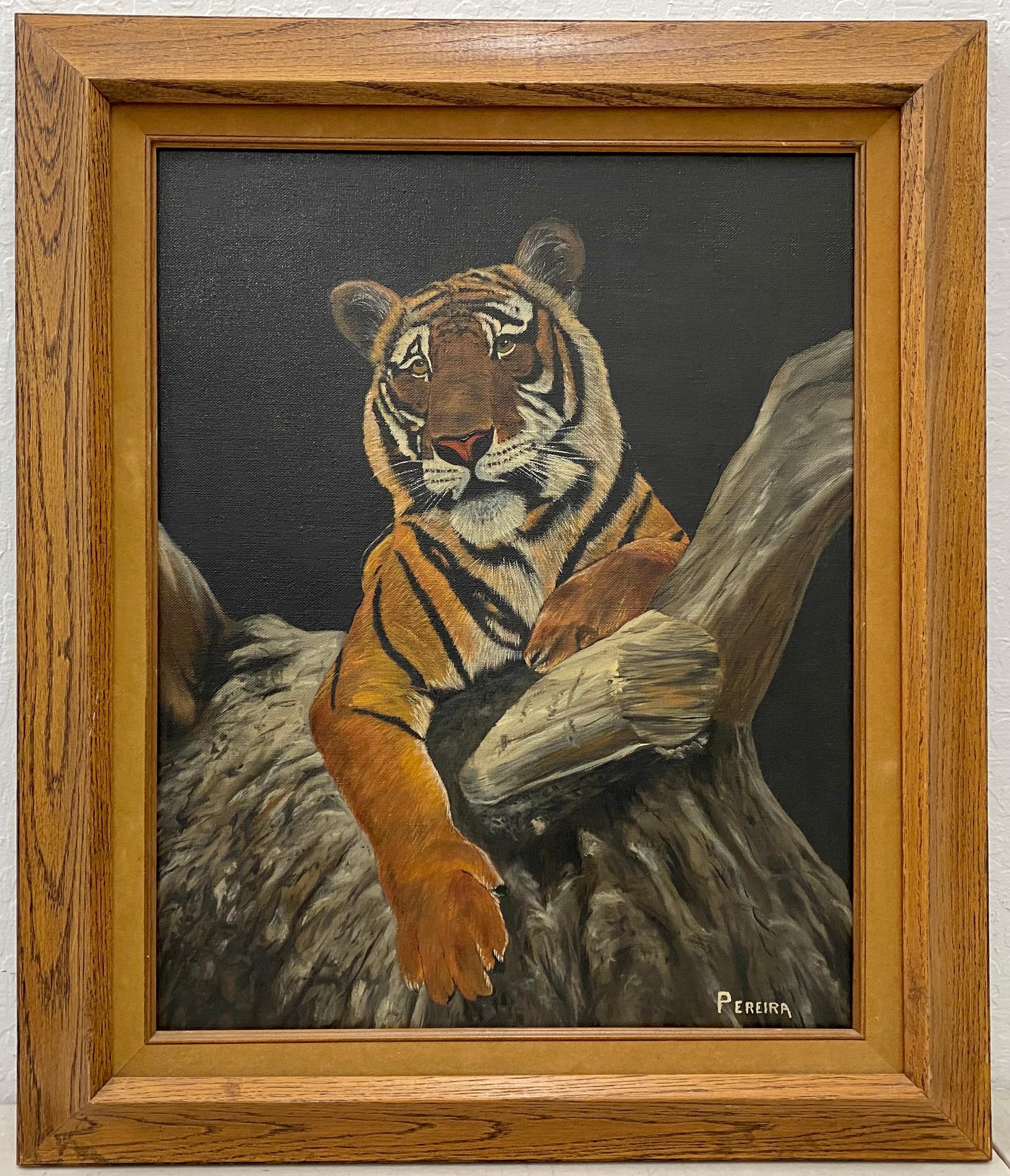 Vintage Portrait of a Tiger in a Tree by Periera C.1970