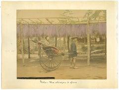 Ancient View from Tokyo - Original Albumen Print - 1880s/90s