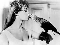 "Brigitte Bardot ""Naughty Girl"" Globe Photos Fine Art Print"