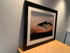 Large Color Photograph African Landscape Matted and Framed