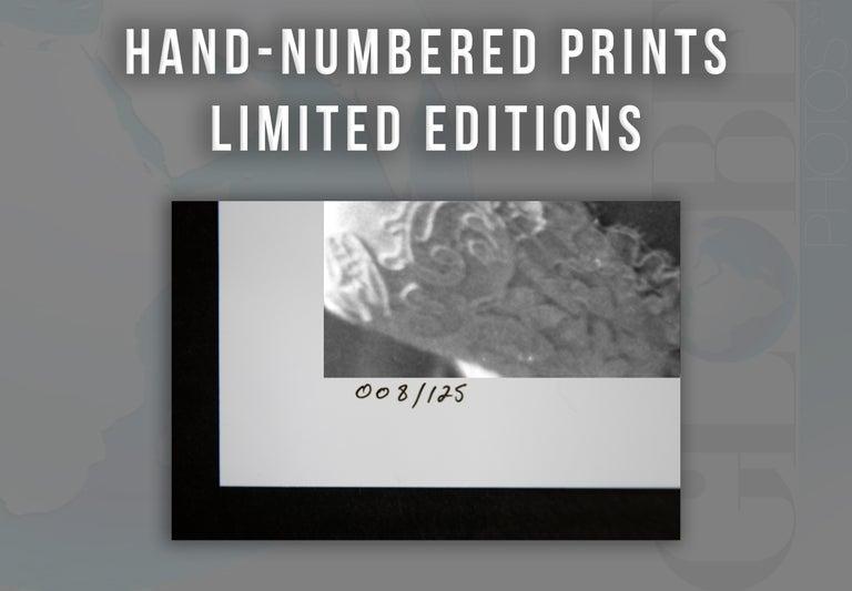 Elizabeth Taylor: Diamonds in the Studio Globe Photos Fine Art Print For Sale 1