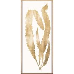Gold Leaf Seaweeds, No. 3, framed