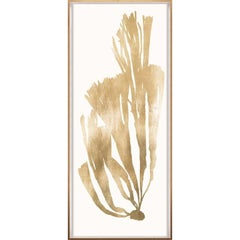 Gold Leaf Seaweeds, No. 4, framed