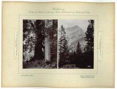 Inda - Siriska - Original Vintage Photo - 1893