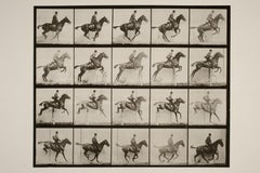 Jumping A Hurdle (1886) - Silver Gelatin Fibre Print
