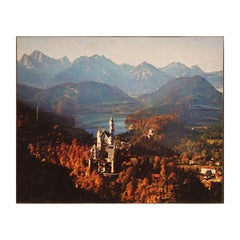 Neuschwanstein Castle in the Forrest Bavaria Germany Colored Photograph