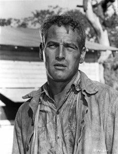 "Paul Newman in ""Cool Hand Luke"" Fine Art Print"