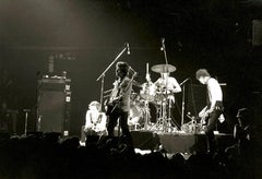 Sex Pistols Live In Concert Fine Art Print