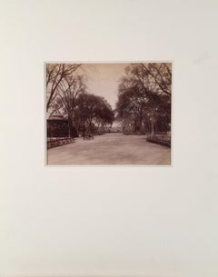 """The Mall"", Central Park, New York City Photograph"