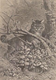 A Cat Hidden in the Tree - Original Lithograph - 1880