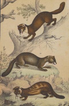 A Hunting Scene  - Original Lithograph - Late 19th Century