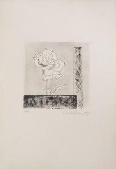 A Rose - Original Drypoint  - 1920s
