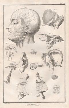 18th Century Figurative Prints