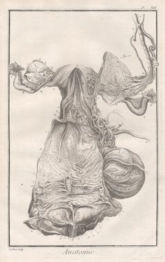 18th Century and Earlier Figurative Prints