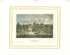 Ancient View of Sacramento - Original Lithograph - 1850s