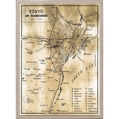 Antique City Maps, Tokyo, gold leaf, acrylic box frame