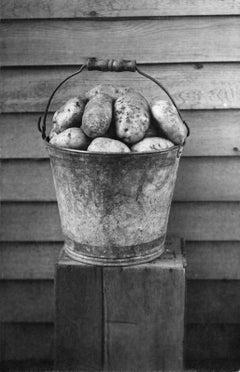 Bucket of Potatoes