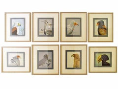 Collection of Eight Bird Prints