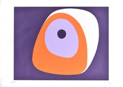 Concentric Circles - Original Screen Print by Italian Master - 1973