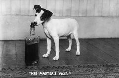 His Master's Vice