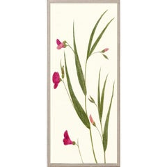 Hubbard Flowers No. 1202, giclee print, framed