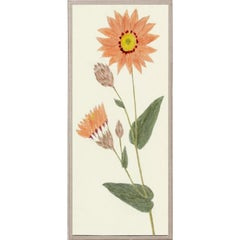 Hubbard Flowers No. 2497, giclee print, framed