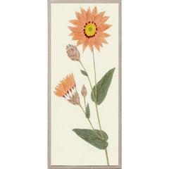 Hubbard Flowers No. 2497, giclee print, unframed
