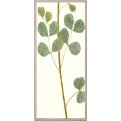 Hubbard Flowers No. 900, giclee print, unframed