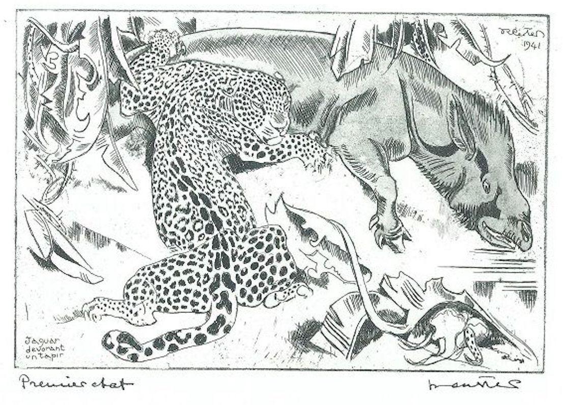 Jaguar Dévorant un Tapis - Original Etching by Unknown French Artist - 1941
