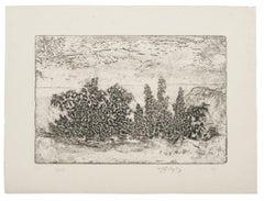 Landscape - Original Etching - 1969