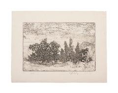 Landscape - Original Etching on Paper - 1969
