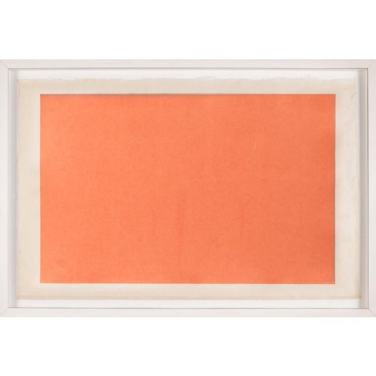 Unknown Abstract Print - Modern Color Study Rectangle no. 4, silkscreen, framed