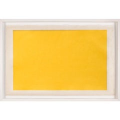 Modern Color Study Rectangle no. 5, silkscreen, framed