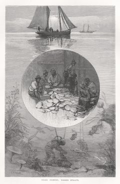 Pearl Fishery, Torres Straits, antique 1880s diving wood-engraving