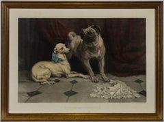 19th Century Animal Prints