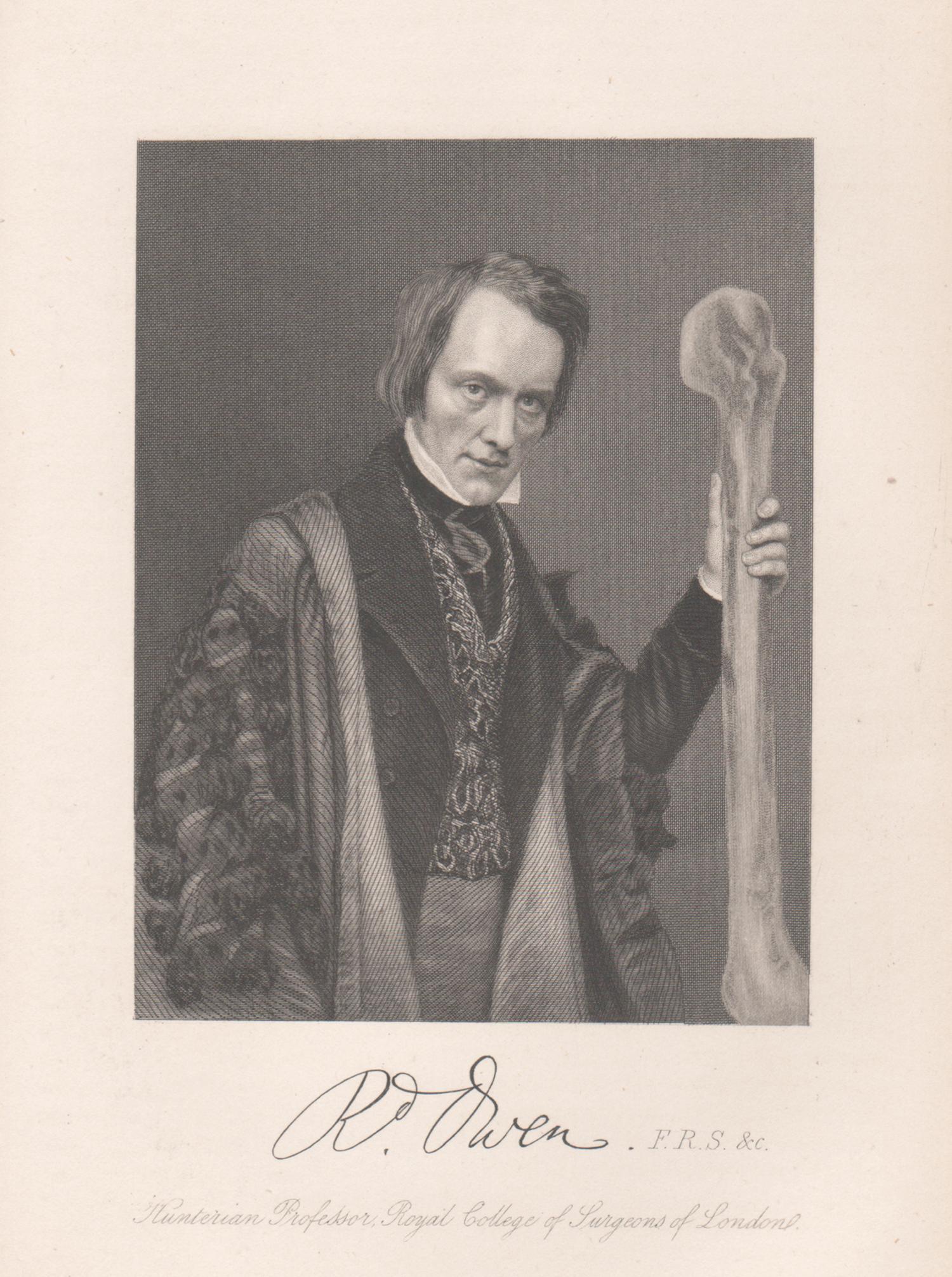 Sir Richard Owen, palaeontologist, portrait engraving, 1861