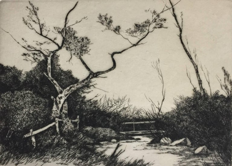 Unknown Landscape Print - Spring Country  Landscape with Bridge and Brook.