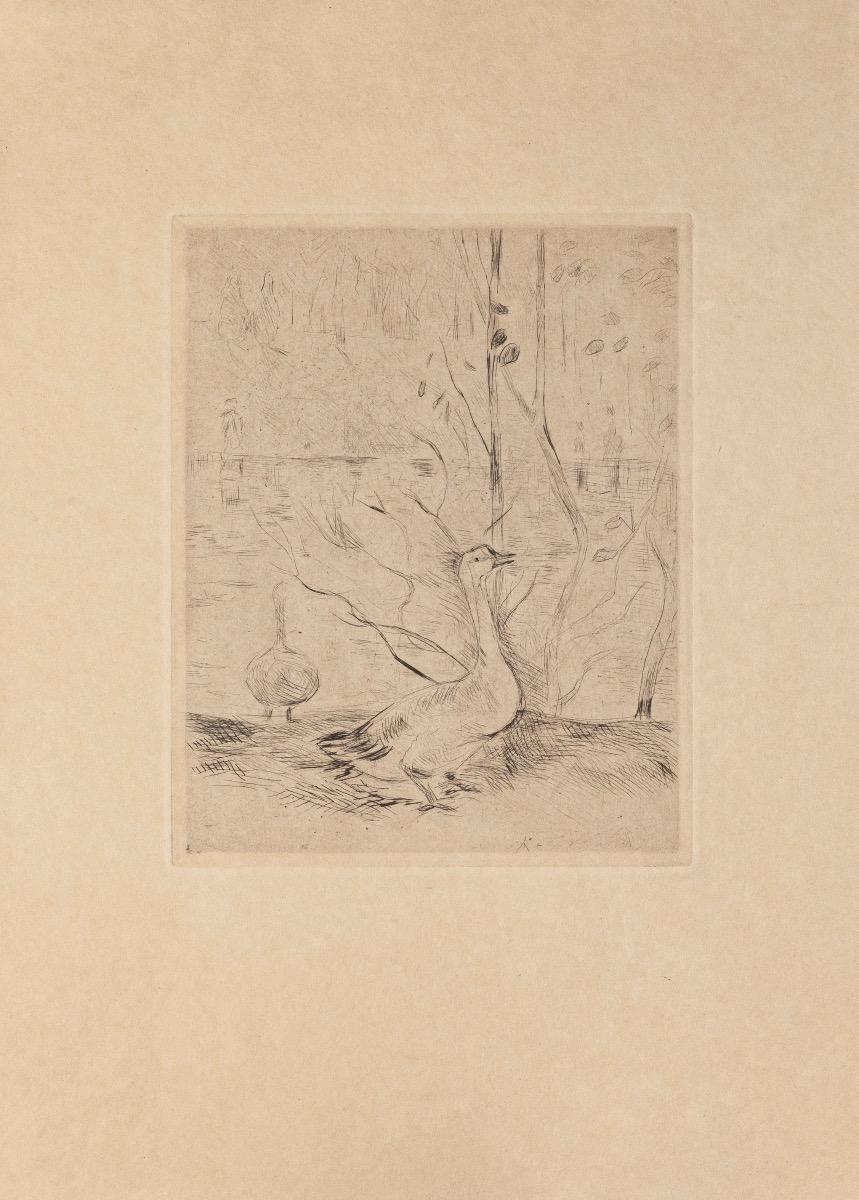 Swan - Original Etching on Paper - 19th Century