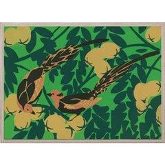Tropical Birds No. 2, acrylic box, framed
