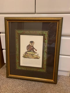 Vintage English Mid-Century Framed Print Elegant Elegant Framing in Greens, Gold