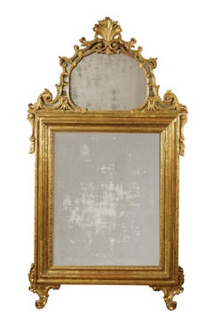 18th Century Louis XV Mirror Turin Carved and Gilded Wood Yellow Gold