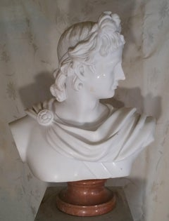 19th Century Grand Tour Marble Bust of a Young Apollo