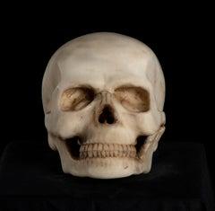 19th Century, White Marble Sculpture A Depiction of Vanitas, Skull Memento Mori