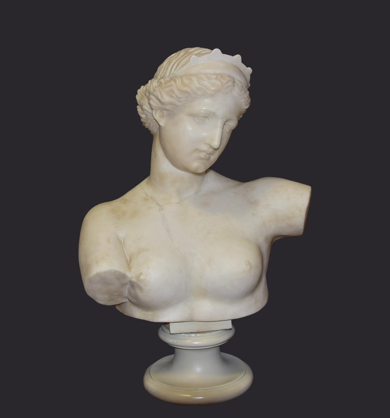 Aphrodite Bust is an original decorative marble object realized in the half of XIX century by Italian manufacture.   This beautiful and precious sculpture is entirely realized in white marble and represents a portrait of the beautiful ancient Greek