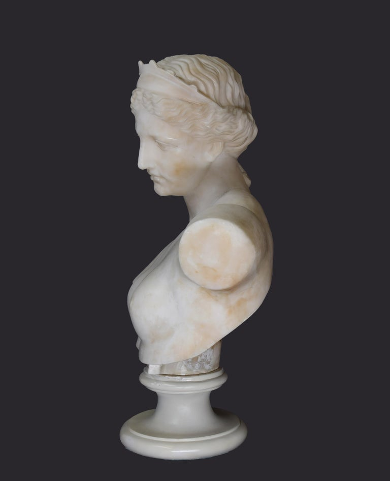 Ancient Marble Bust of Aphrodite - Italy - 19th Century 1