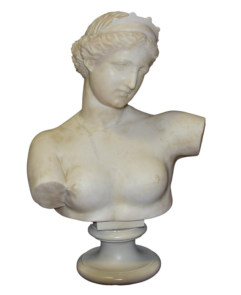 Unknown Figurative Sculpture - Ancient Marble Bust of Aphrodite - Italy - 19th Century