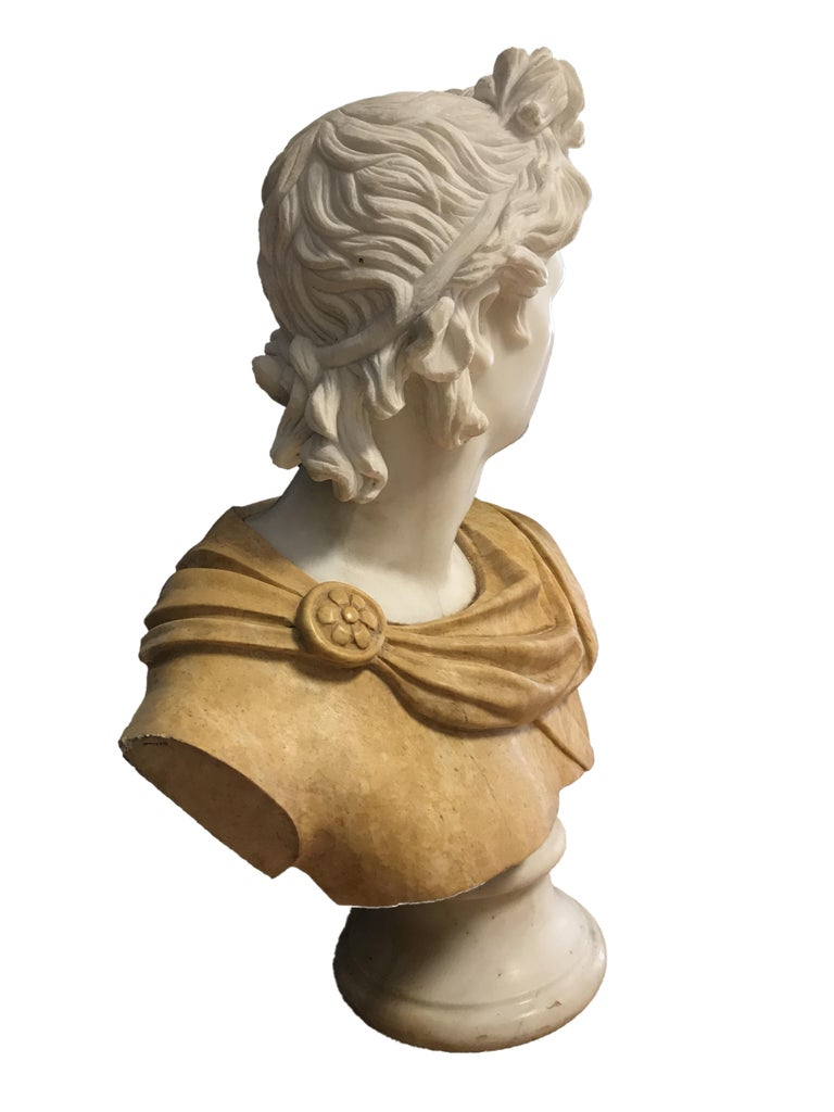 Bust of Apollo - Carrara Marble and Yellow Marble by Unknown Master Early 1900 For Sale 1