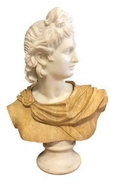 Bust of Apollo - Carrara Marble and Yellow Marble by Unknown Master Early 1900