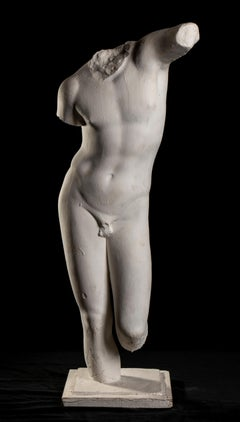 Classical White Plaster Cast Nude Sculpture of Apollo After The Antique 20th