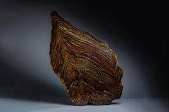 Earl Life - Superb Banded Iron Trace Fossil Formation